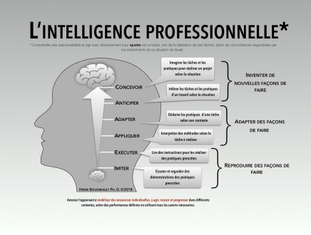 Intelligence professionnelle 2